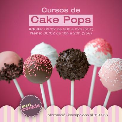 Curs de cake popsFebrer 2014
